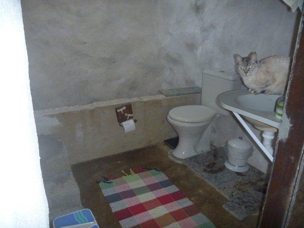 O segundo banheiro que estamos fazendo da casa é acessível. Já dá para usá-lo, mas ainda falta instalar o chuveiro, piso, forro e pintá-lo. A Marola gosta de tomar água na torneira.